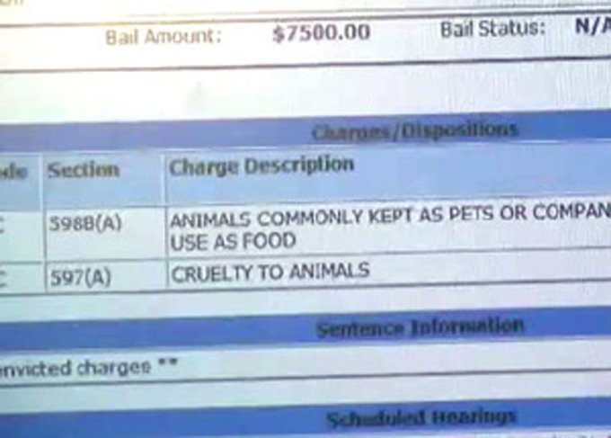 The charges include animal cruelty and eating an animal commonly kept as a pet or companion.