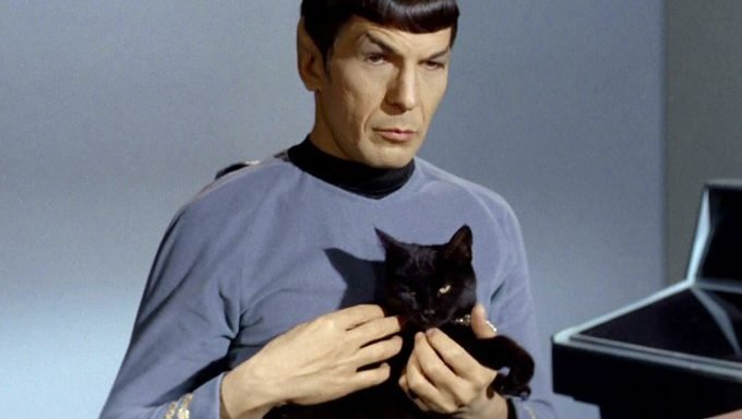 spock with a black cat from the original star trek series
