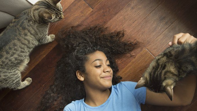 woman lying on floor with cats