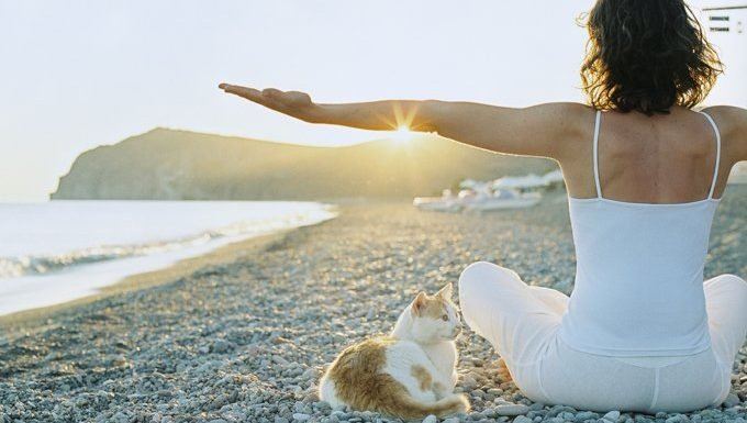 woman doing yoga on beach with cat