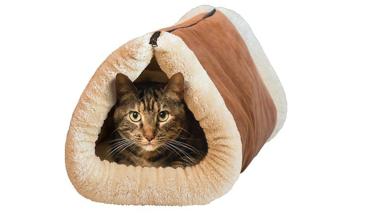 A cat sits in a rolled up, plush cat bed.