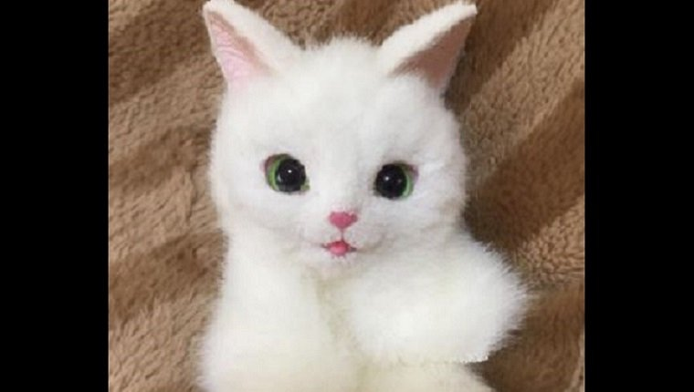 A white cat bag with a pink nose and green eyes lies on a brown blanket.
