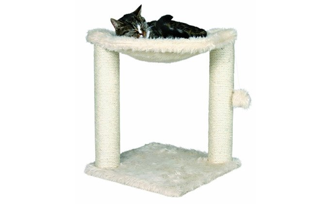 best-cat-bed-toy