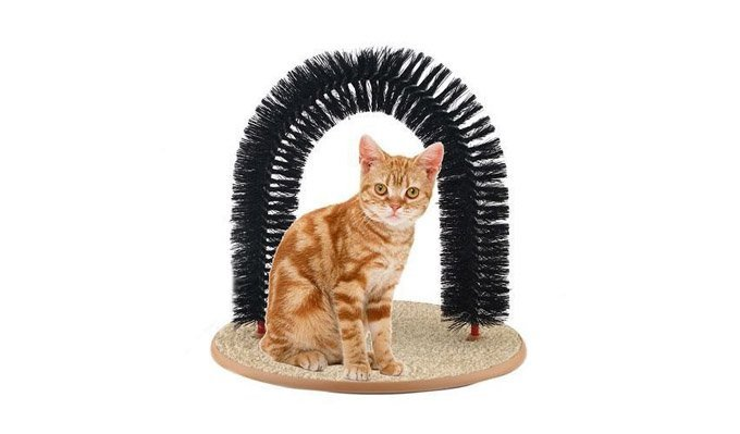 cat-grooming-scratch-toy-1