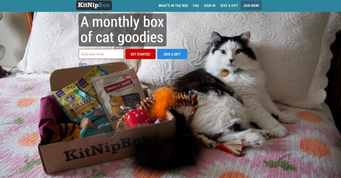 monthly-cat-box-subscription