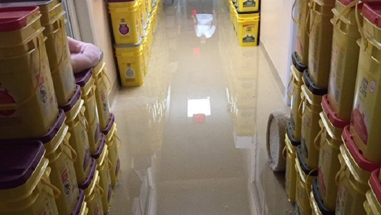 flood waters around cat food and litter