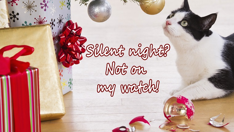 """cat christmas e-card. cat sniffs ornaments. reads """"silent night? not on my watch!"""""""