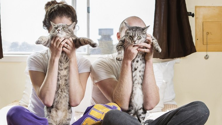 Couple in bed holding cats over their faces
