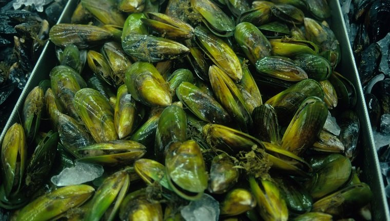 Close-up of green-lipped mussels (landscape)