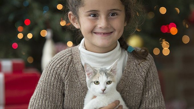 young girl holding kitten by christmas tree