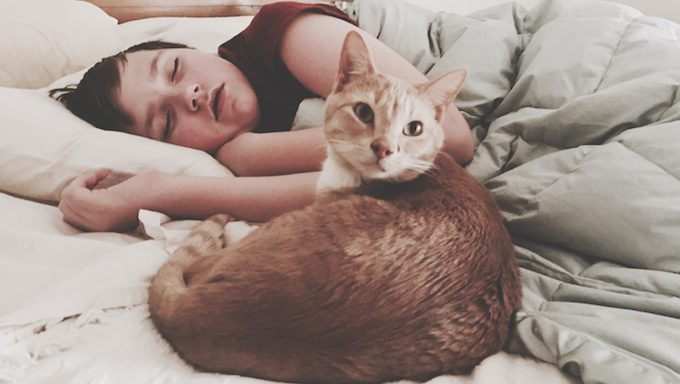 cat lying on bed with child