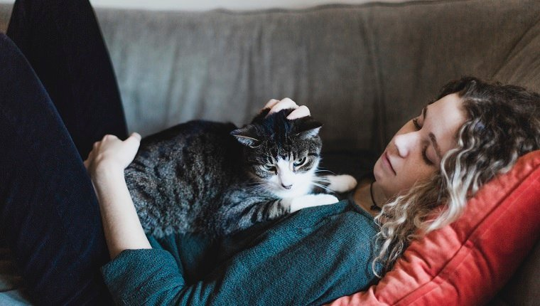 animal, cat, adult, 18-19 years, woman