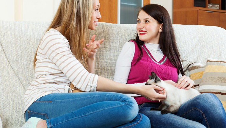 two happy girls talking on sofa in home interior