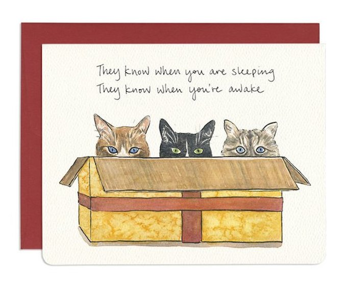 cats in a gift box