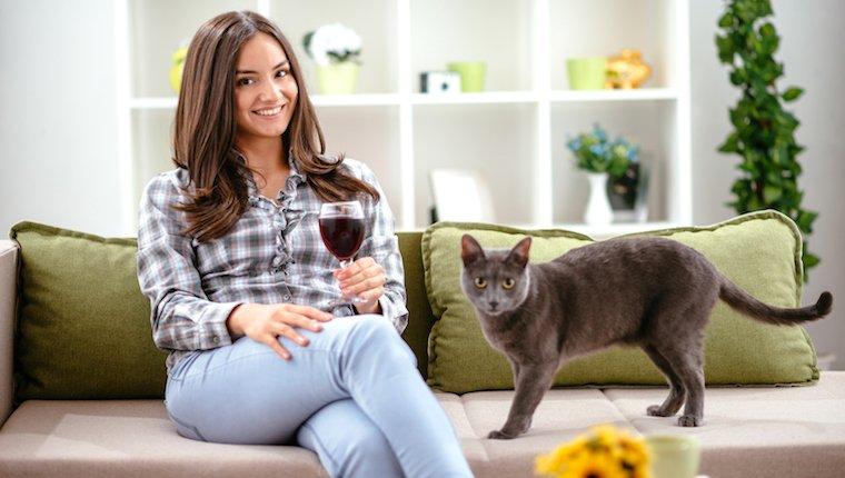 Woman drinking wine on couch with cat on drink wine day