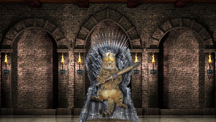 cat on iron throne from game of thrones