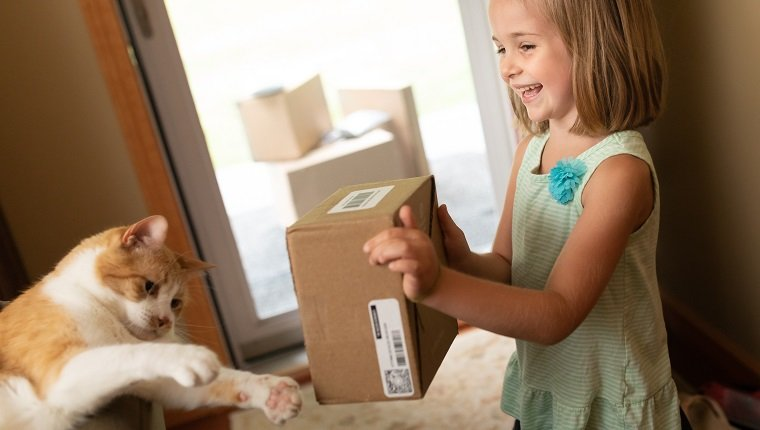 Cute Little Girl Showing Delivery Box to Cat