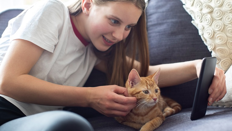 Teenage Girl With Pet Cat Taking Selfie On Mobile Phone At Home