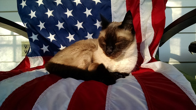 Time For An American Nap