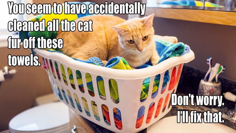 Chores Can Always Get More Difficult