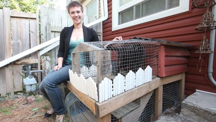 If They Must Go Outside, Keep Your Cat Fenced In